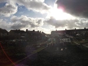 A break in the cloud over the bleak allotments.